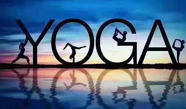 瑜伽免费体验
