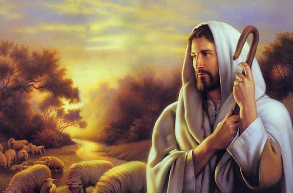 活动-探索圣经奥秘之路