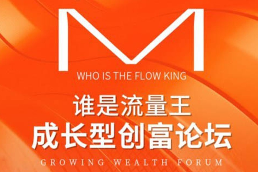 谁是流量王-成长型创富论坛