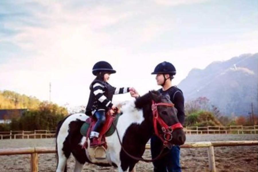 马背上的童年:小骑士趣味马背体验