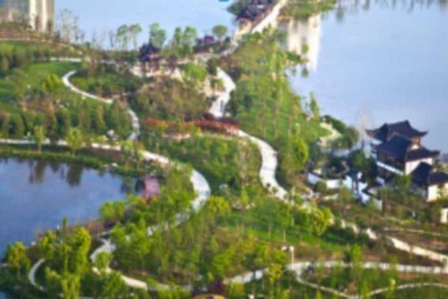 4月20日徒步沙湖公园,9公里环湖生态绿道