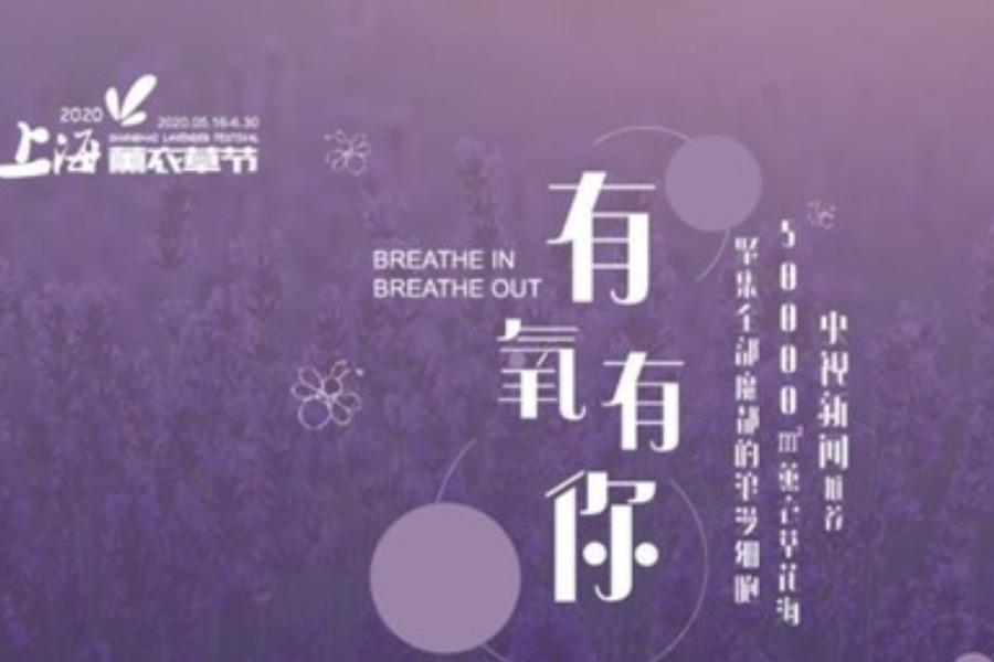 2020上海薰衣草节