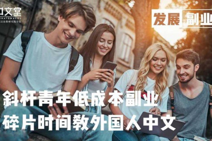 【对外汉语分享会&教学实战】轻松有趣的黄金副业,教外国人中文,拓展国际视野