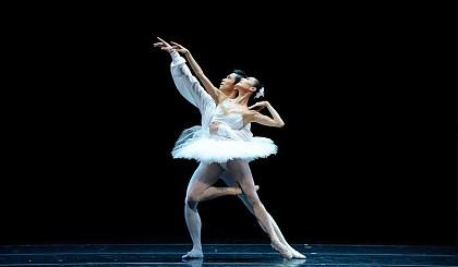 安徽大畅想艺术舞蹈艺考班招生