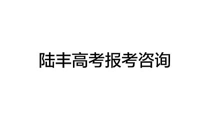 2017陆丰高考报考讲座