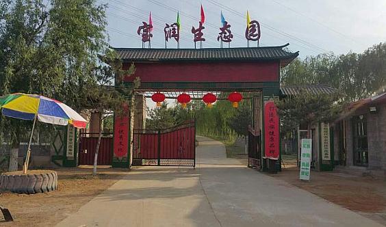 宝润生态园~素心传统文化~古筝夏令营
