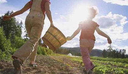 齐齐哈尔市少年儿童有机蔬菜种植大赛报名处