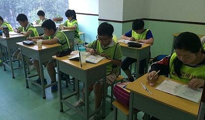 中小学语数英专业辅导
