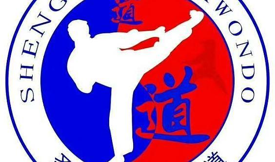 六盘水圣博跆拳道盛大开业2017年10月5日。跆拳道特技表演等